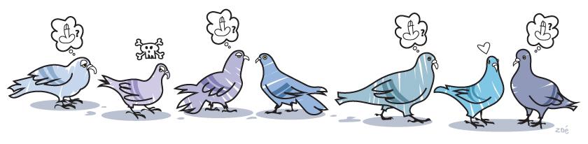 illustration pigeons