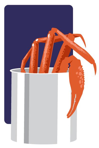 illustration cuisson araignee de mer